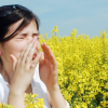 Allergy Season Article