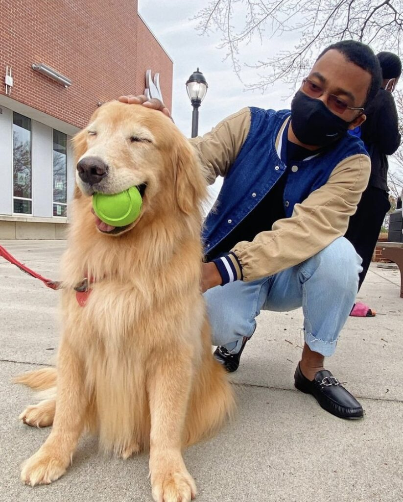 UWG Hosts Paws to Relax on National Puppy Day